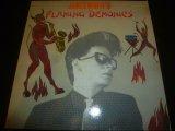 JAMES WHITE'S FLAMING DEMONICS/SAME
