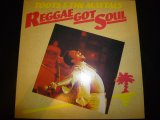 TOOTS & THE MAYTALS/REGGAE GOT SOUL