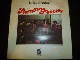 FLAMIN GROOVIES/STILL SHAKIN