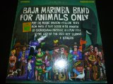 BAJA MARIMBA BAND/FOR ANIMALS ONLY
