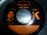 JAMES BROWN/WORLD