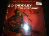 BO DIDDLEY/IN THE SPOTLIGHT