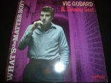VIC GODARD & SUBWAY SECT/WHAT'S THE MATTER BOY