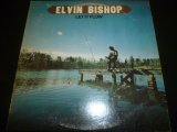 ELVIN BISHOP/LET IT FLOW