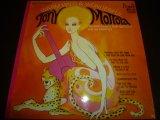 TONY MOTTOLA/WARM, WILD AND WONDERFUL