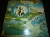 STEVE HOWE/BEGINNINGS