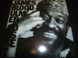 JAMES BLOOD ULMER/ODYSSEY