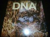 DNA/A TASTE OF DNA