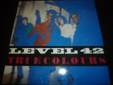 LEVEL 42/TRUE COLOURS