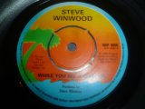 STEVE WINWOOD/WHILE YOU SEE A CHANCE