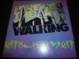 PERE UBU/THE ART OF WALKING