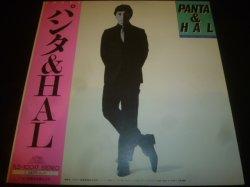 画像1: パンタ & HAL/1980X
