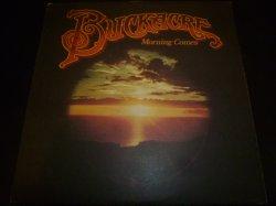 画像1: BUCKACRE/MORNING COMES
