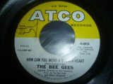 BEE GEES/HOW CAN YOU MEND A BROKEN HEART