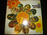 JIM KWESKIN JUG BAND/GARDEN OF JOY