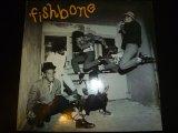 FISHBONE/SAME
